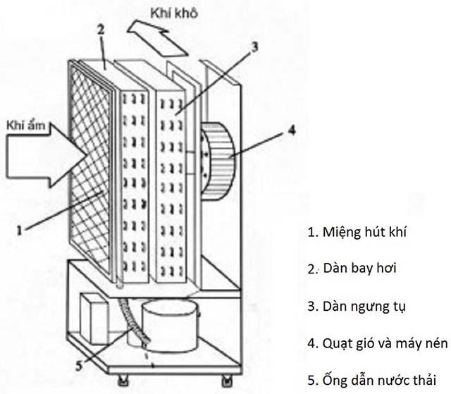 cấu tạo máy hút ẩm